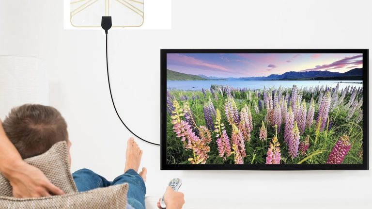 How will 1byone signal booster help you get the best digital display?